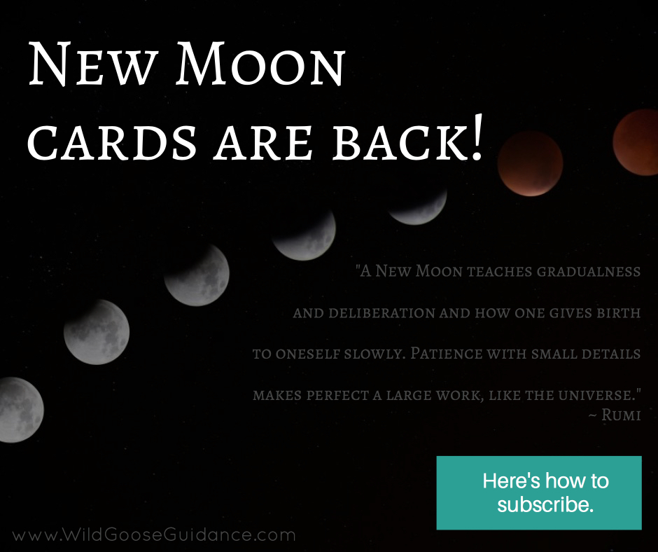 New Moon cards are back!