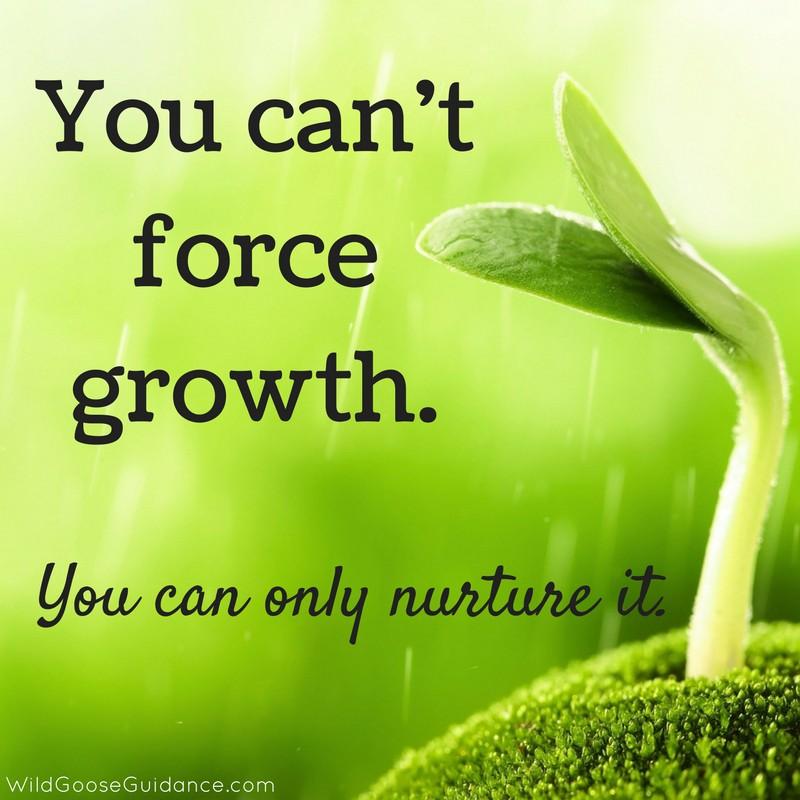 Growth.