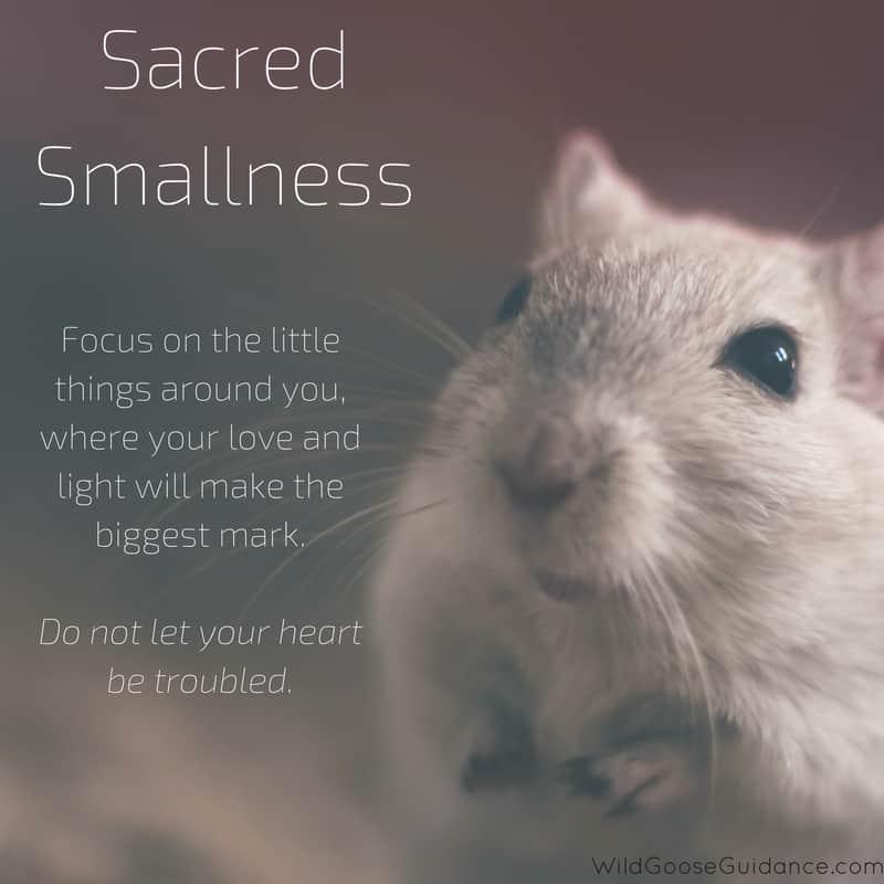 Sacred Smallness