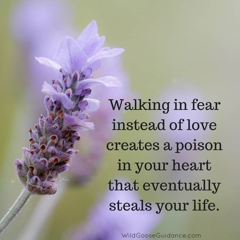 Walking in fear instead of love creates a poison in your heart that eventually steals your life